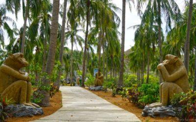 Забавные звери на острове Обезьян близ Нячанга — полезная информация для посетителей